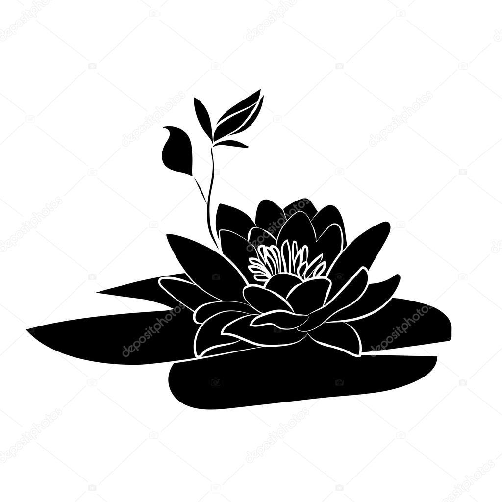 lotus flowers icon