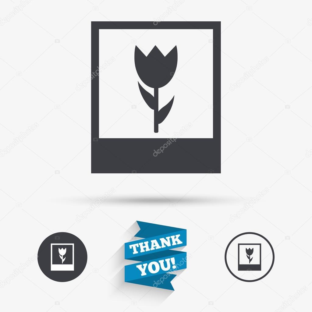Makro-Foto-Rahmen-Symbol. Blumen Fotografie — Stockvektor ...