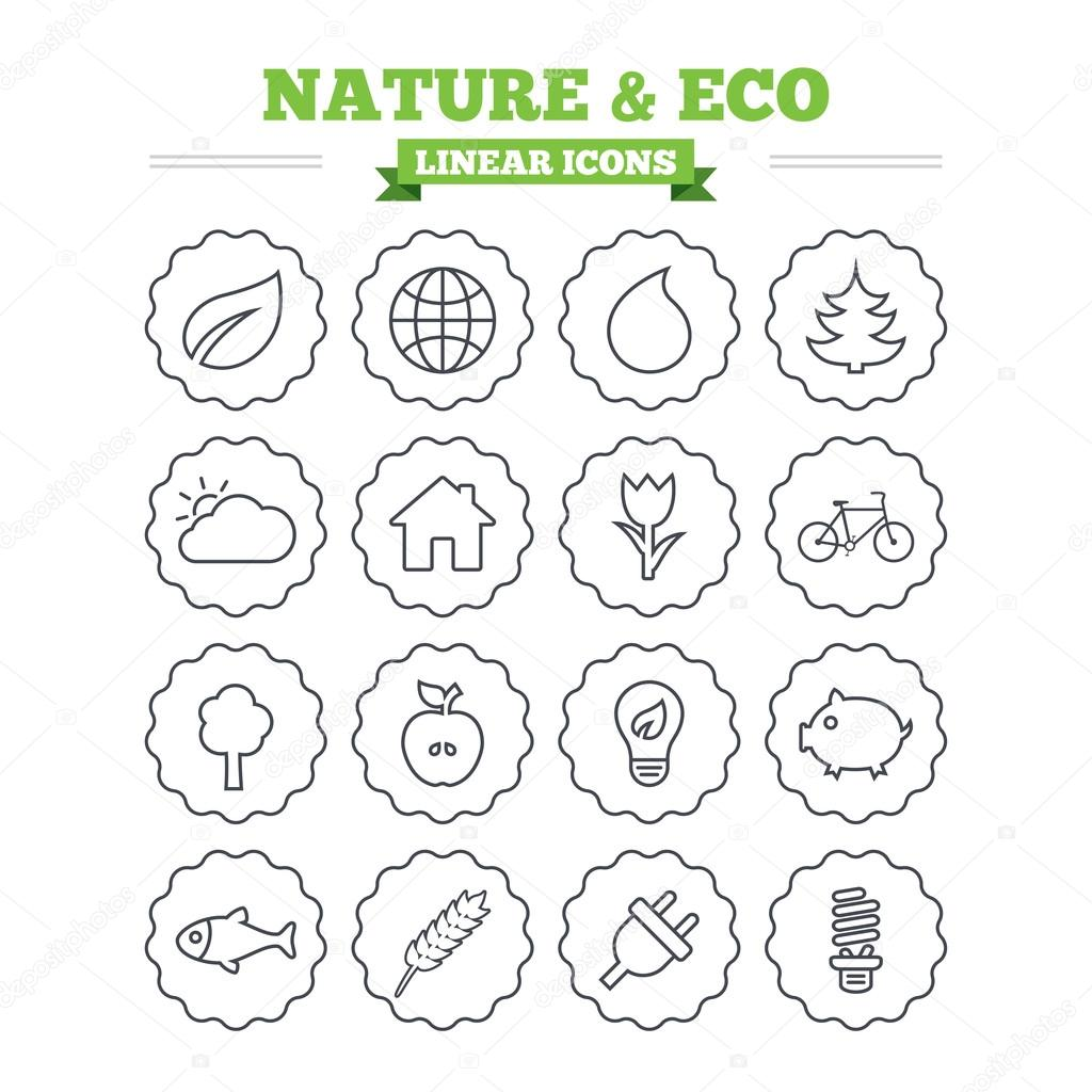 Nature and Eco icons set.