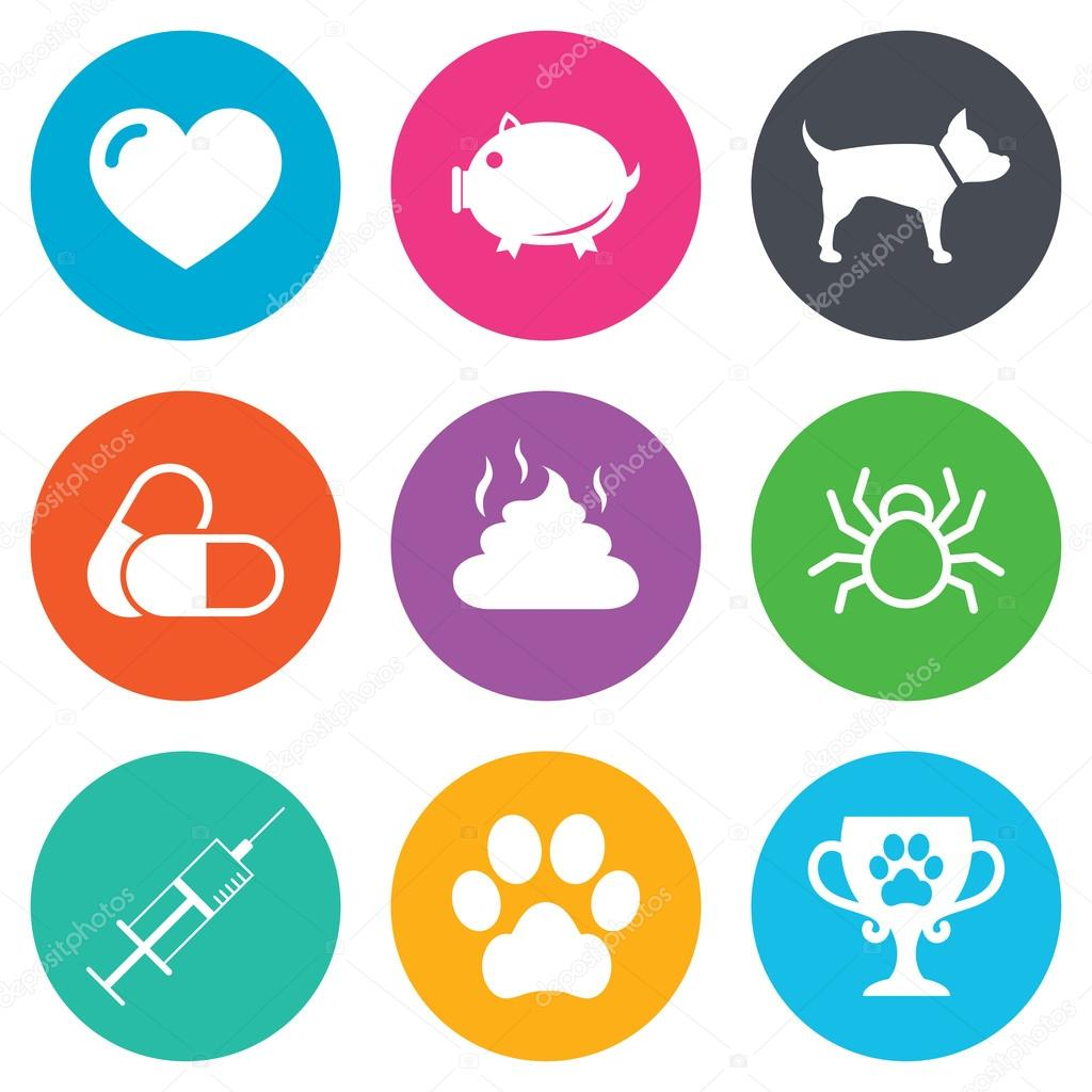 Veterinary, pets icons.