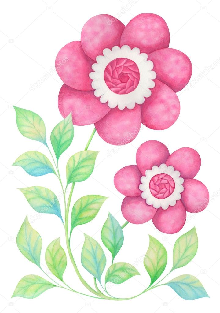 Watercolor flowers  in watercolor