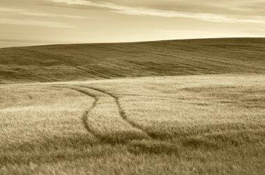 Scottish countryside landscape in sepia tone. Scotland. UK