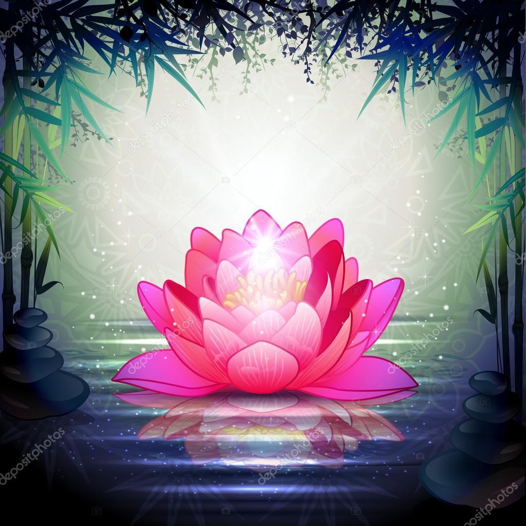 Fotos Flores De Loto Flores De Loto En Un Jardín Zen Vector De