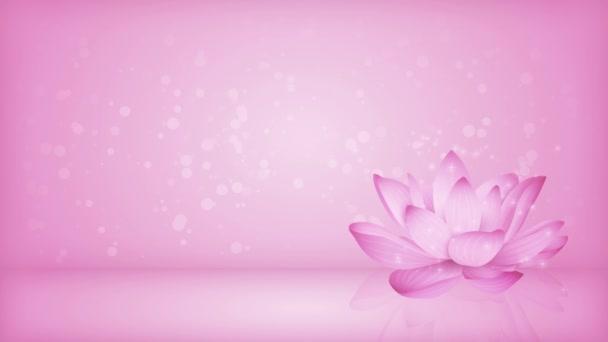 pozadí produktu šablona animace, lekníny na růžovém svahu pozadí, bokeh světla, hvězdy svítí, lotos, růžové tapety