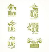Fotografia Etichette di olio doliva ed elementi di design