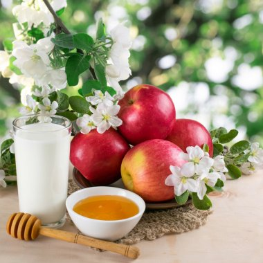 Still life with apples, milk, honey and twig of apple tree