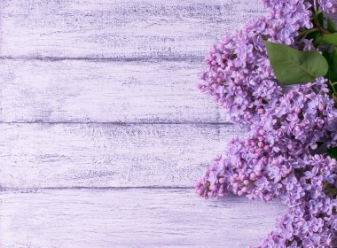 Lilac on background of wooden planks in rustic style