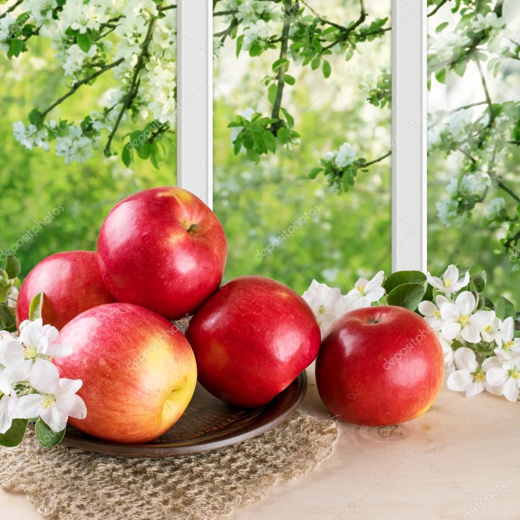 Baum Und Garten stillleben mit äpfeln und zweig apple baum und garten außerhalb