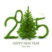 Fotografie Neujahr 2015