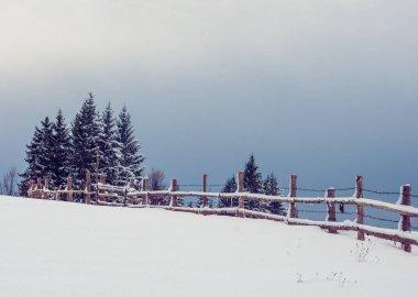 """Картина, постер, плакат, фотообои """"новогодний снег в горах, красивые виды на горы и ветви деревьев и зимний воздух пейзаж море шишкин"""", артикул 437991642"""