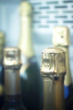 Champagne wine bottles rack fridge cooler