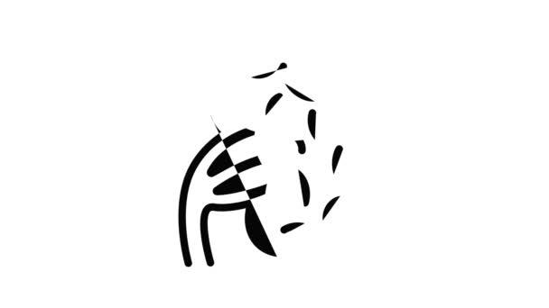 Animace ikon lidské sleziny
