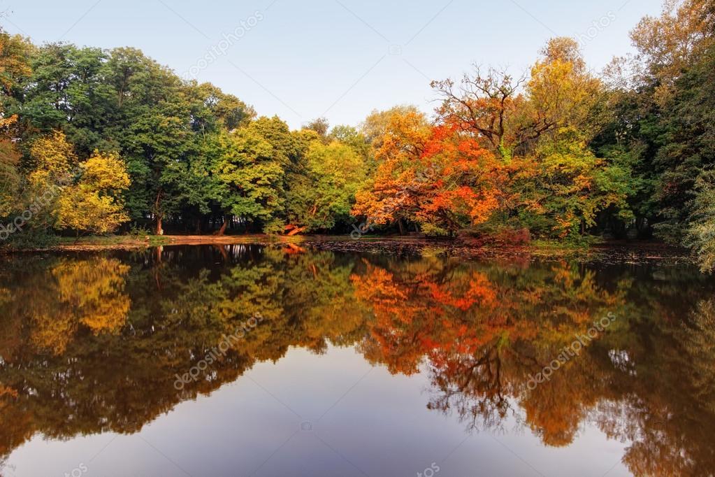 秋の湖と森 — ストック写真 © TT...