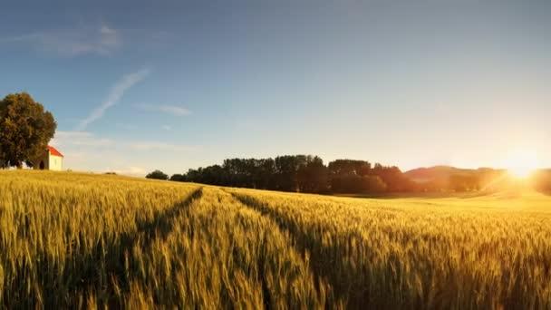 Západ slunce nad pšeničné pole s cestou a kaplí na Slovensku