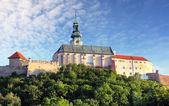 Fotografie Slovensko - Nitra hradu