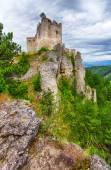 Fotografie Ruin of castle Lietava