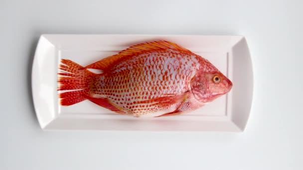 Fisch liegt auf dem Teller