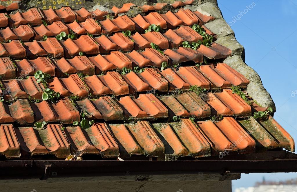 Detail van rode dak tegel van de oude stad u stockfoto kosobu