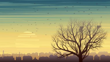 Lonely tree with birds on background of city at sunset.