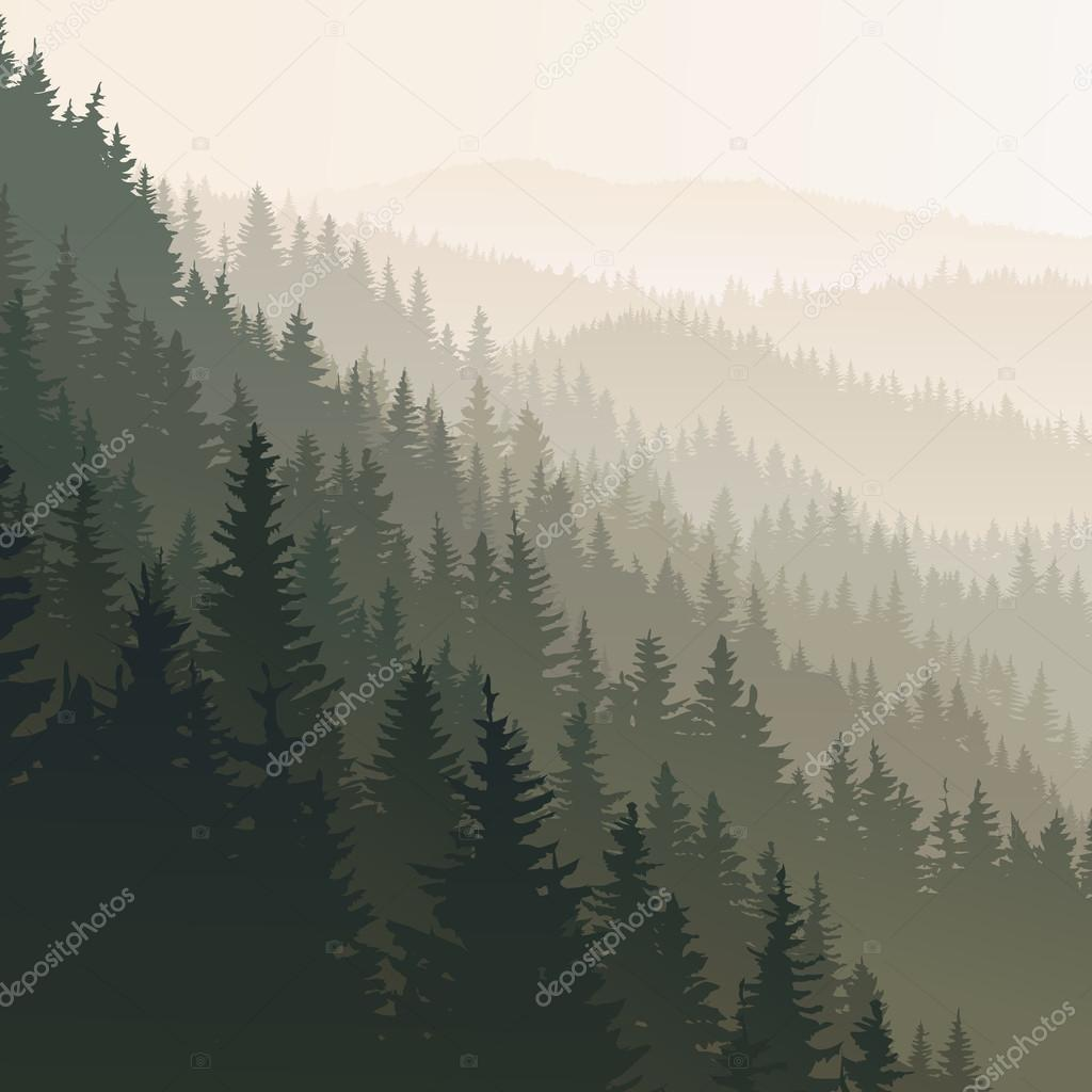 Square wild coniferous wood in morning fog.