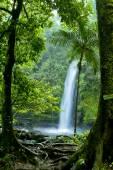 Photo Beautiful Indonesian Landscapes