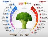 Vitaminok és ásványi anyagok a brokkoli virág fej