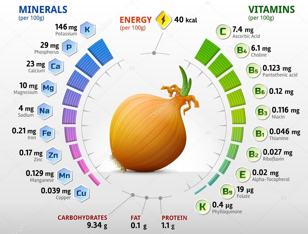 Vitamins and minerals of common onion
