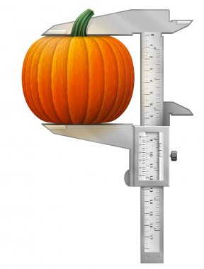 Concept of winter squash and measuring tool. Qualitative vector illustration for agriculture, vegetables, cooking, halloween, gastronomy, thanksgiving, olericulture, etc. It has transparency, blending modes, mask, gradients clip art vector