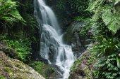 Nádherný vodopád v národním parku Lamington