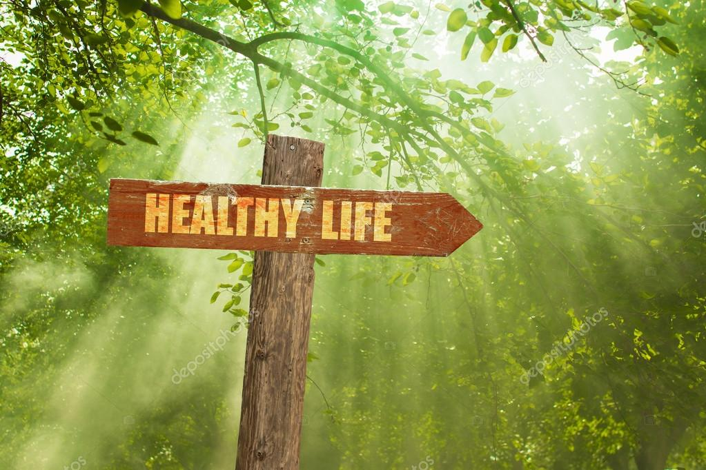 Sign with Healthy Life Text on Green Forest.