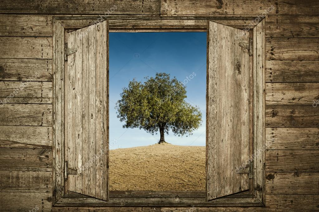 window with a wood frame.