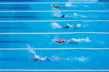 swimming  competition