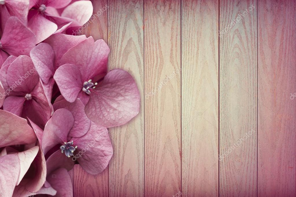 Stunning pink flowers on pink wooden background. Copy space