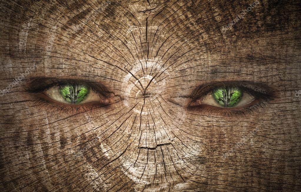 green human eye on a wood