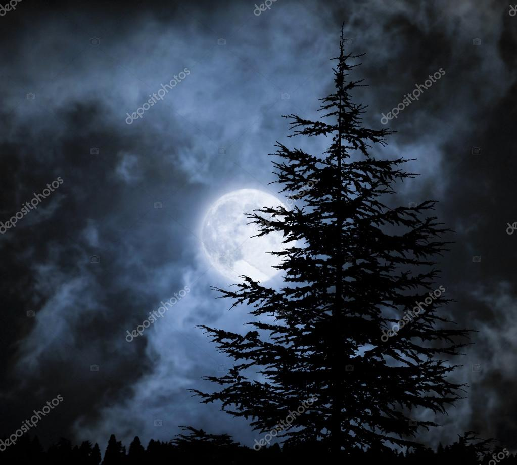 Magic landscape with pine tree  under dramatic cloudy sky at full moon