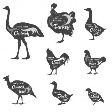 Poultry icons set.