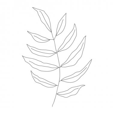 Minimalism line drawing. leaf vector one line art. Botanical Sketch Vector Illustration. Nature vector Line drawing. for home decor such as posters, wall art icon