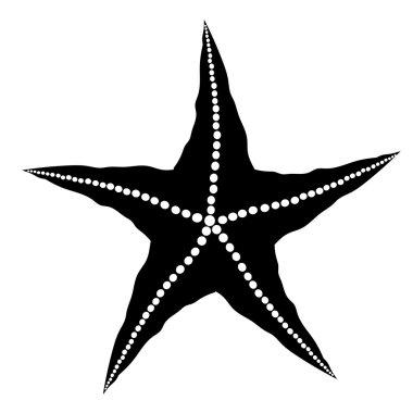 Silhouette  of Starfish
