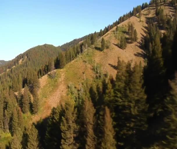 Lesy a stráně