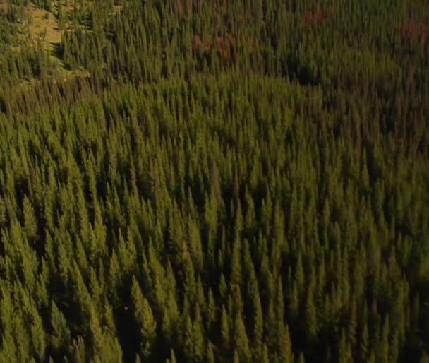 Les a hory