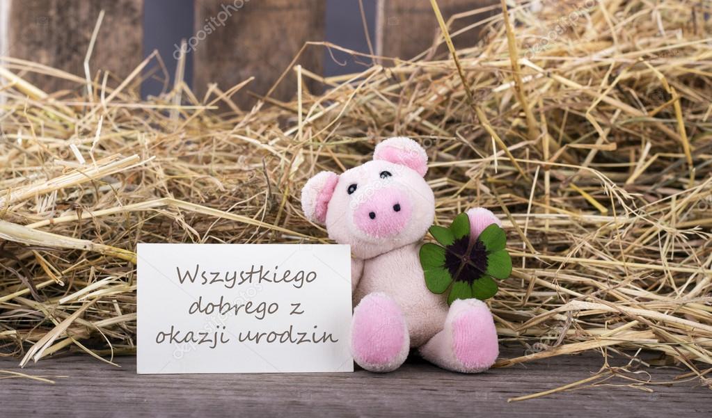 grattis på födelsedagen polska Proficiat met je verjaardag — Stockfoto © coramueller #66830459 grattis på födelsedagen polska