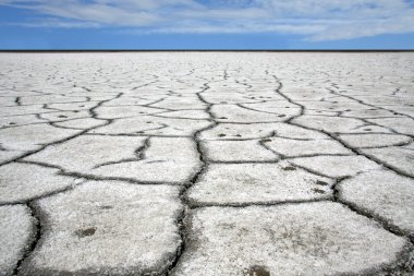 Dry gray ground with cracks covered with salt, selective focus