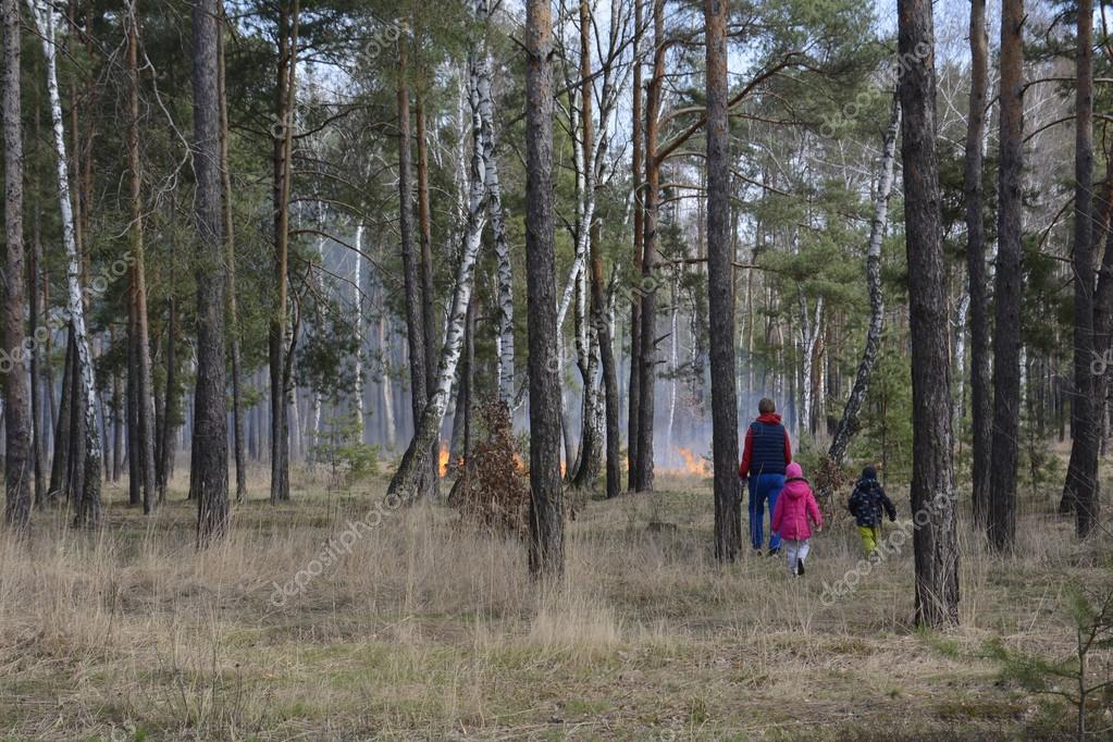 Fire in the spring forest. Father with children going to extingu