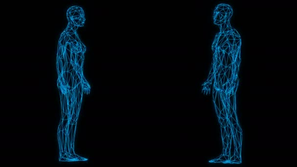 3d low poly rotating female and male figure formed by blue lines