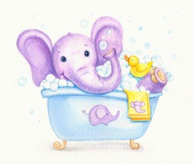Bathing baby elephant