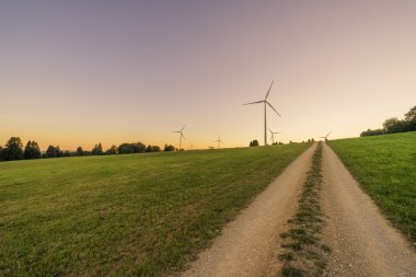 Wind mill wind energy park with natural way