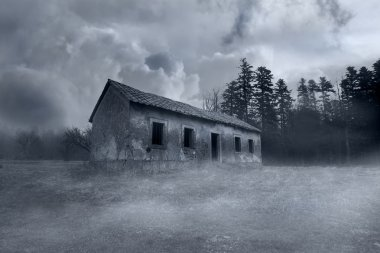 Spooky Abandoned Horror House in the Misty Forest