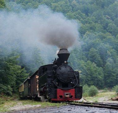 Mocanita wood-burning locomotive