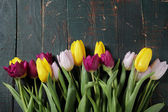 spring tulip bouquet on old boards