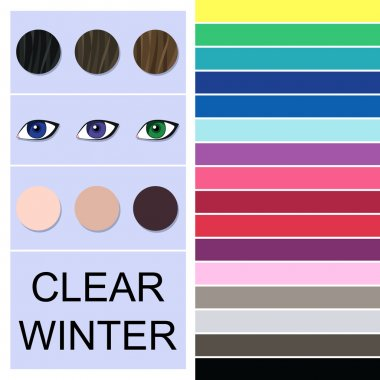 Stock vector seasonal color analysis palette for clear winter type